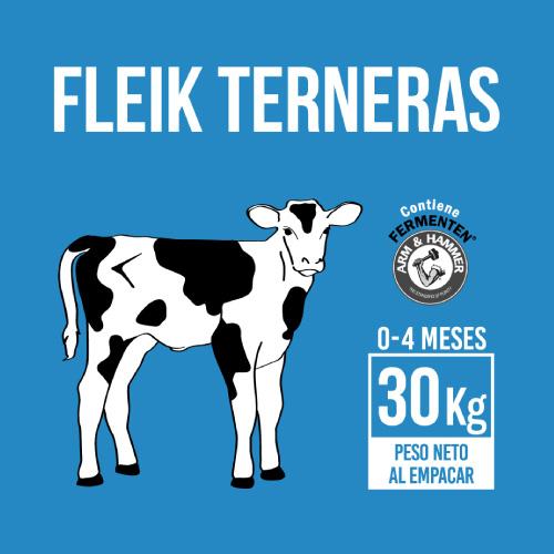 fleik-ternera