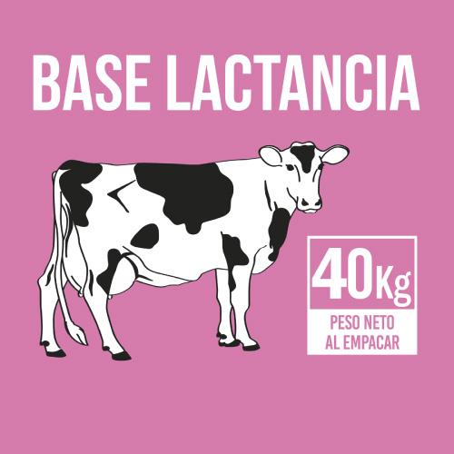base-lactancia