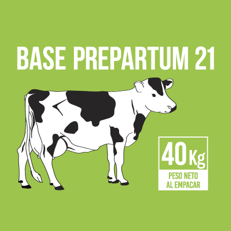 uruz-base-prepartum-21