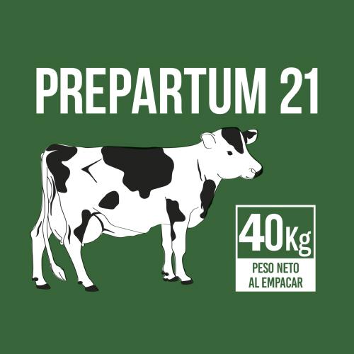 uruz-miniaturas-prepartum-21